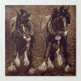 Shires / Horses Canvas Print