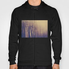 Sunbeams in the Forest Hoody