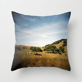 Sonoma cows Throw Pillow