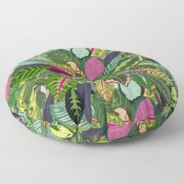 Prayer Plant Painting Calathea Floor Pillow