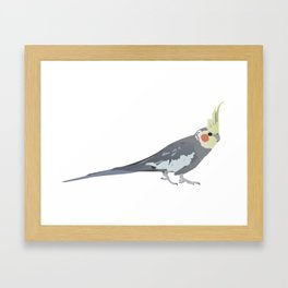 Cockatiel Parrot Framed Art Print