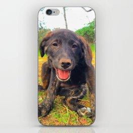 Precious Puppy iPhone Skin