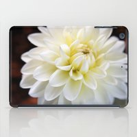 dahlia iPad Cases featuring Dahlia by Elizabeth Boyajian