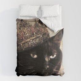 Black Cat - Queen Cora Comforters