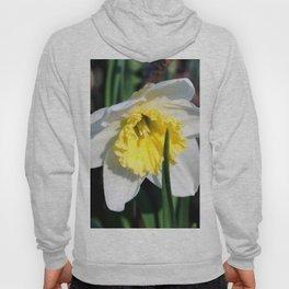 Spring flower Hoody