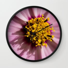 Macro shot of pink flower Wall Clock