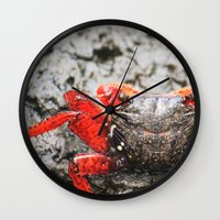 crab Wall Clocks featuring Crab by Cassidy Marshall