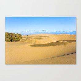 The desert 1.3 Canvas Print