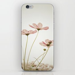 COSMOS - Sepia iPhone Skin