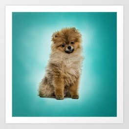 Cute Pomeranian Dog Art Print
