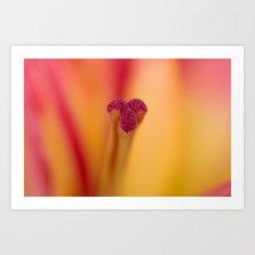Lily Glory Art Print