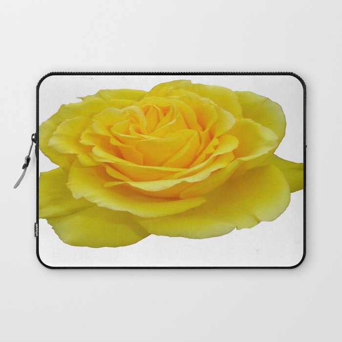 Beautiful Yellow Rose Closeup Isolated on White Laptop Sleeve