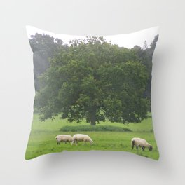 Sheep on a meadow Throw Pillow