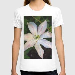 Jazz Berry Jam T-shirt