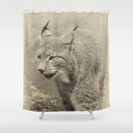 beautiful lynx Shower Curtain