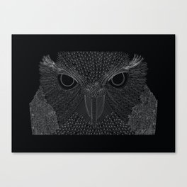 Owling imperfections Canvas Print