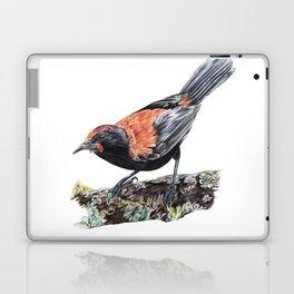 New Zealand Saddleback Laptop & iPad Skin