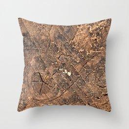 Cracked Grunge Wood Throw Pillow