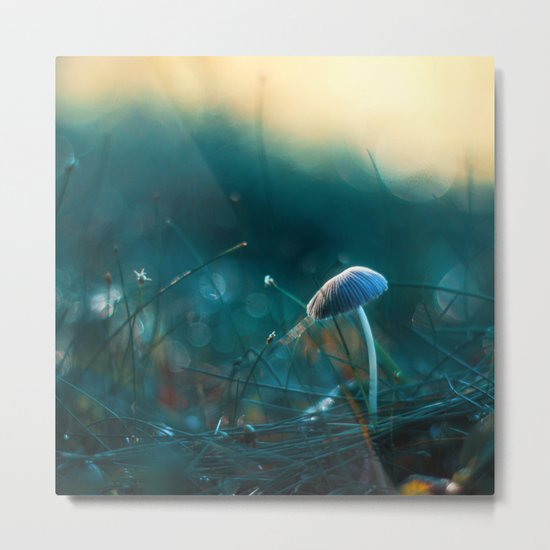 In the Dusk of Dawn Metal Print