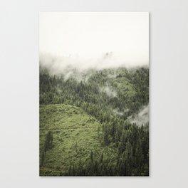 Switchback Canvas Print