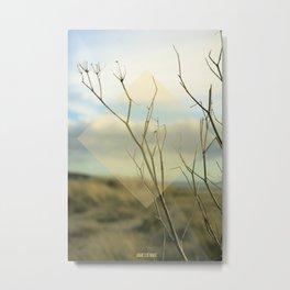 Summer 02 Metal Print