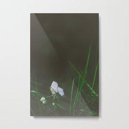 Lonely Flowers 02 Metal Print
