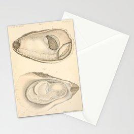 Oyster Anatomy Stationery Cards