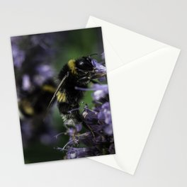 Bumblebee on Lamiaceae agastache II Stationery Cards