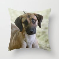 the hound Throw Pillows featuring Hound Pup by IowaShots