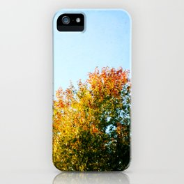 Autumn Treetops iPhone Case