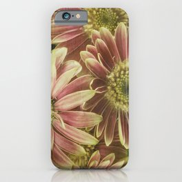 little gerberas iPhone Case