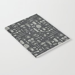 Oddities: X-ray Notebook