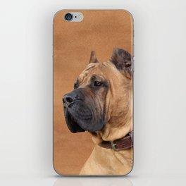 Perro de Presa Canario iPhone Skin