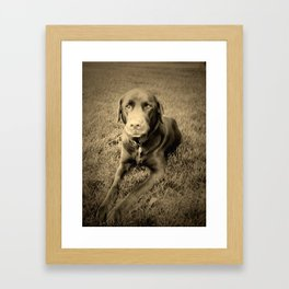 Chocolate Framed Art Print