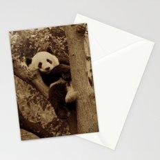 I love pandas!  Stationery Cards