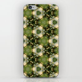 The Flower Shop No. 12 iPhone Skin