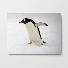 Gentoo Penguin Walking Through Snow Metal Print