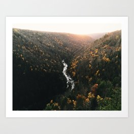 Blackwater Canyon Art Print