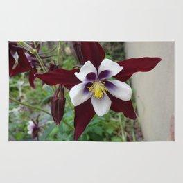 Mountain Flower Rug