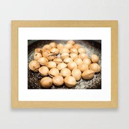 Ginko Nuts Framed Art Print