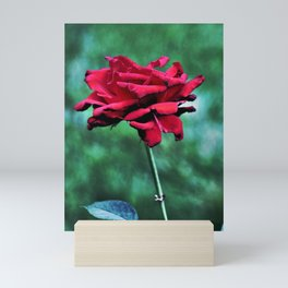 Withered Beauty (ROSE) Mini Art Print