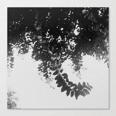Leaf Curl Canvas Print