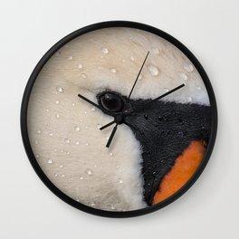 Mute Swan in Winter - CloseUp Wall Clock