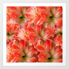 Pink & Red Amaryllis Patterns Floral Art Art Print