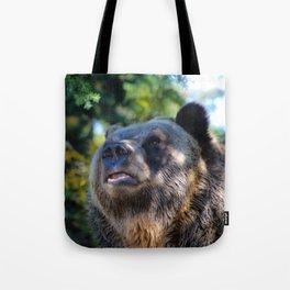 sunny bear Tote Bag