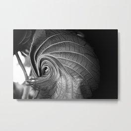 Swirling Leaf Metal Print