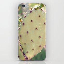 Prickly Pear Closeup iPhone Skin