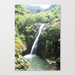 Waterfall Concord Falls Canvas Print