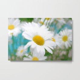 Daisies flowers in painting style 4 Metal Print