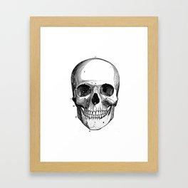 Skull 6 Framed Art Print